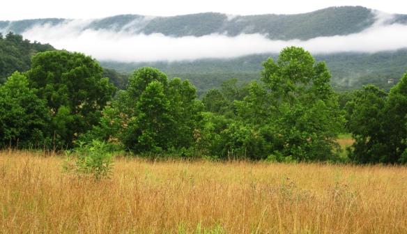 Shenandoah Week 3 023_crop2