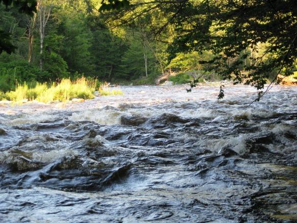 Vermont week 5 014