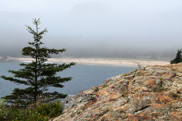 Acadia Week 6 011