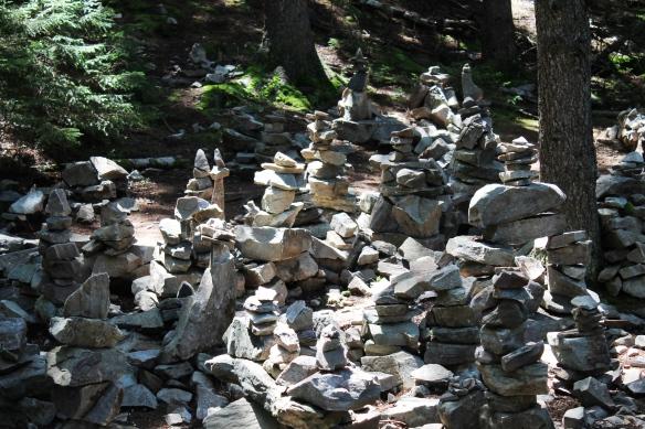 White Rocks Week 6 006