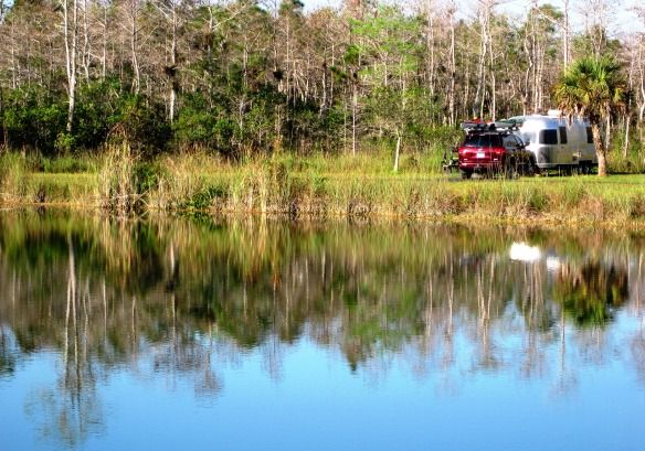 Big Cypress 053_crop