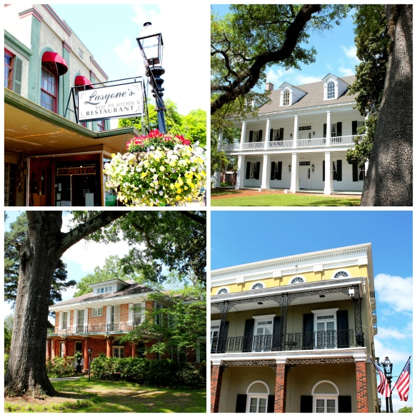 Natchitoches Collage