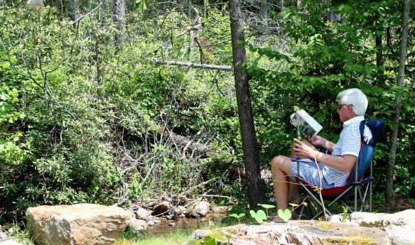 Stony Creek 002