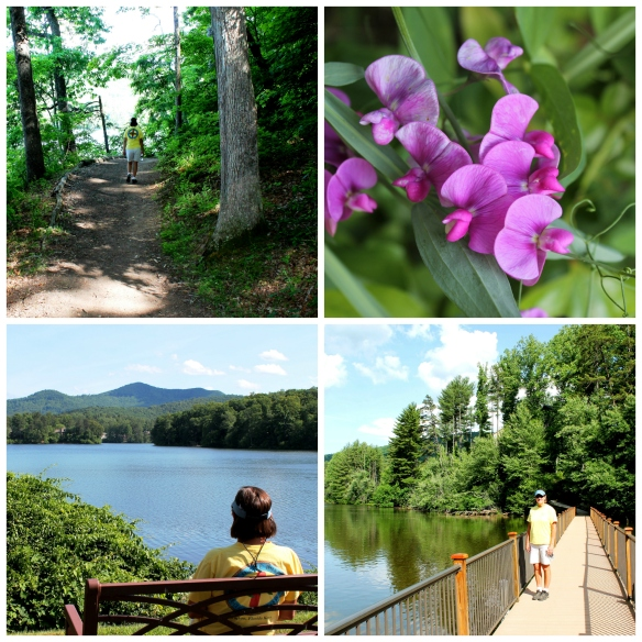 Biltmore Lake Collage