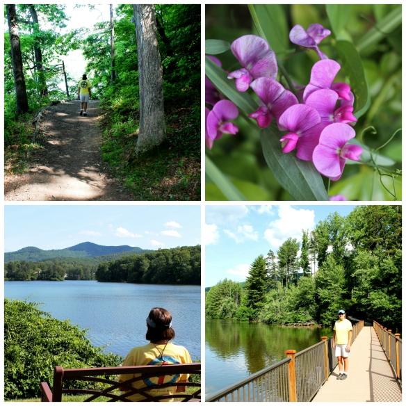 Biltmore Lake Collage