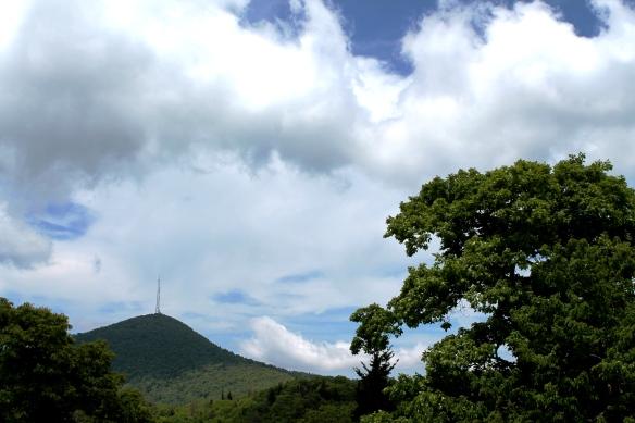 Blue Ridge 064